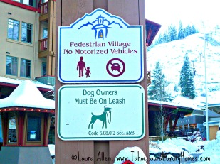 The Village at Squaw Valley is Dog Friendly