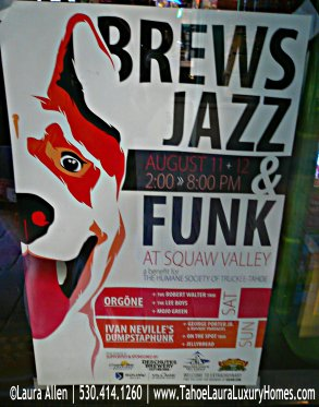 Brews, Jazz and Funk Fest in Squaw Valley