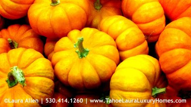 Community Thanksgiving Potluck Dinner – Kings Beach, California
